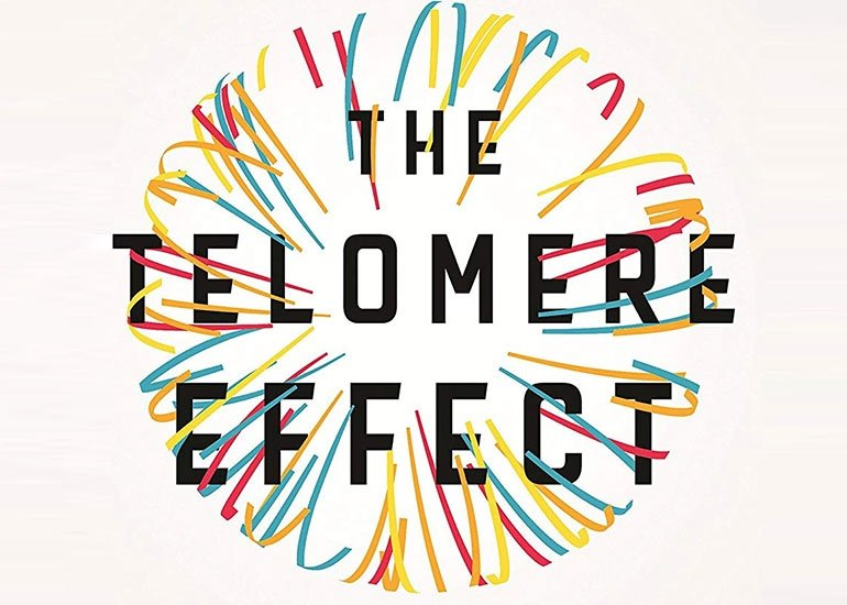 Stress in a Good Way: An Excerpt from The Telomere Effect